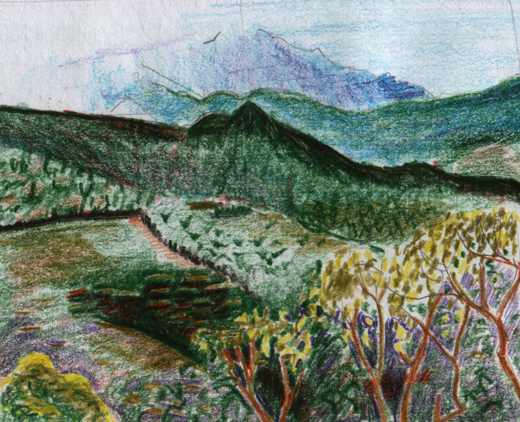 Coloured pencil sketch of the view south from one of the terraces at Ponmudi Hill Station. The clouds shifted constantly, sometimes throwing the mountains under deep shadow, and sometimes allowing the sun through. By the end of the day, the side effects of Cyclone Helen caused rain to flood the roads in the cities.