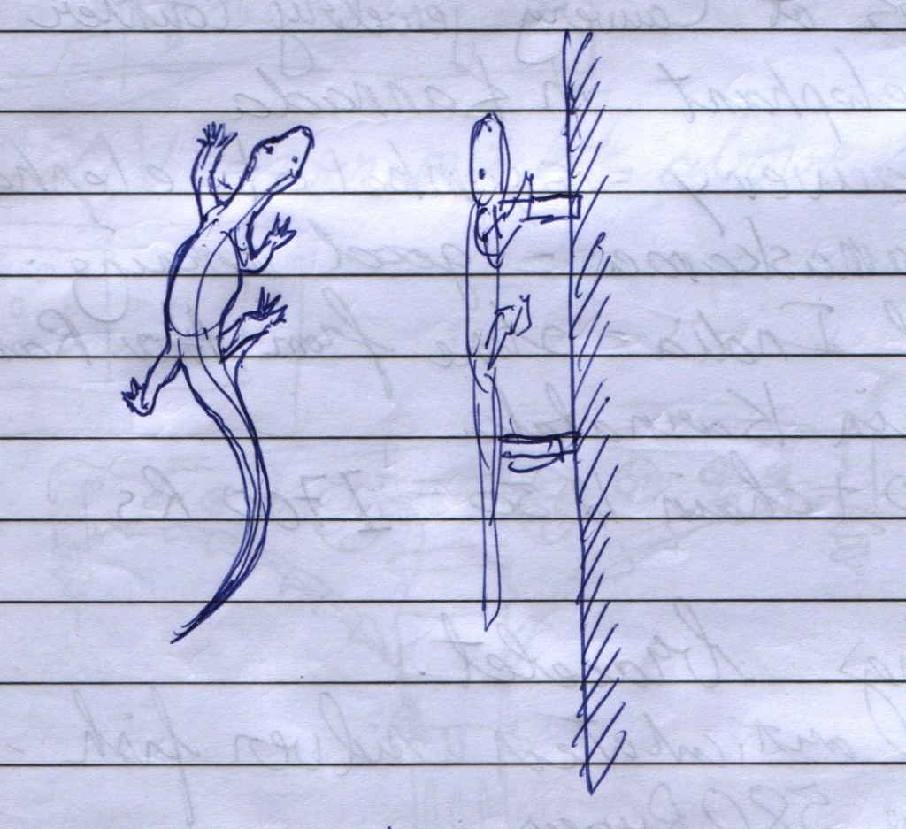 I drew this sketch of a lizard-shaped door handle to describe what I was looking for. One of the men at the hardware store said, wait. He walked off down the street. A short while later he returned with a few different brass, lizard-shaped door handles. I picked out the one that I wanted and bought it. Main Bazaar Road, Paharganj, New Delhi.